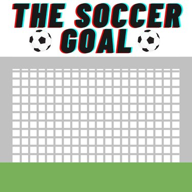 The Soccer Goal
